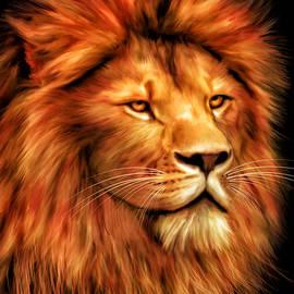 Johanne Dauphinais - Lion portrait