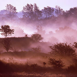 Roeselien Raimond - Magical Misty Morning