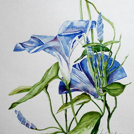April McCarthy-Braca - Morning Glories