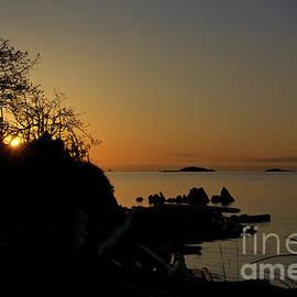 Elmar Langle - Morning Tranquility