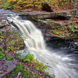 Marcia Colelli - Murray Reynolds Waterfall