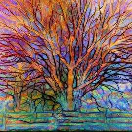 Lilia D - Naked Tree