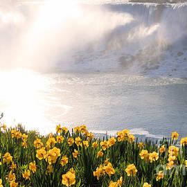 Charline Xia - Niagara American Falls Spring Morning