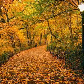 Vivienne Gucwa - NYC Autumn