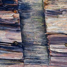 Old wood - Tom Gowanlock