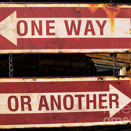 Janice Rae Pariza - One Way Or Another