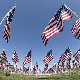 Anthony Totah - Patriotic flag display