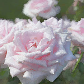 Jennie Marie Schell - Remembrance Pink Roses