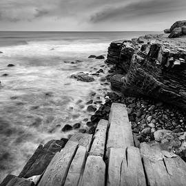 Alexander Kunz - Point Loma Tide Pools