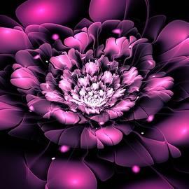 Anastasiya Malakhova - Purple Flower