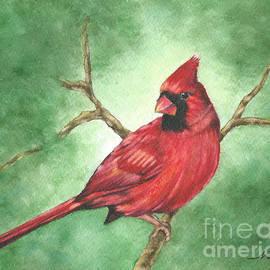Nan Wright - Red Male Cardinal