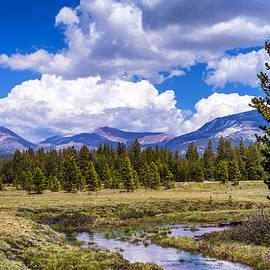 Joseph S Giacalone - River Through The Meadow