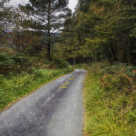 Ian Mitchell - Road To Freedom