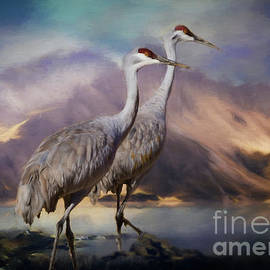 Janice Rae Pariza - Rocky Mountain Sandhill Cranes