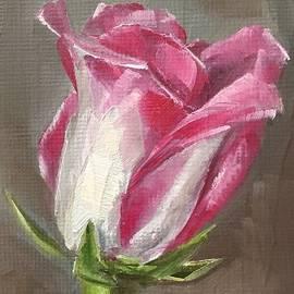 Gary Bruton - Rose