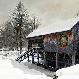 Robin-lee Vieira - Rustic Holiday