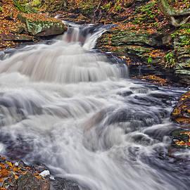 Marcia Colelli - Seneca Waterfall