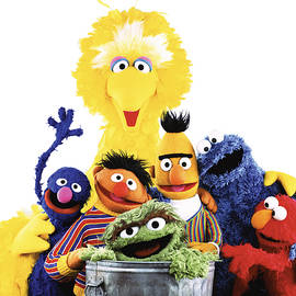 Sesame Street - Fine Art