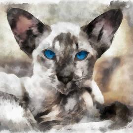 Sergey Lukashin - Siamese cat