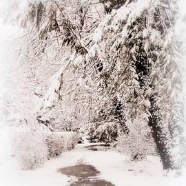 Silent Snow - Jessica Jenney