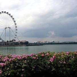 Jijo George - Singapore flyer
