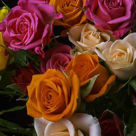Spray Roses - Garry Gay
