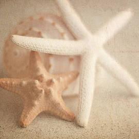 Tom Mc Nemar - Starfish Still Life