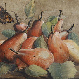 Still life with pears and a butterfly - Giovanna Garzoni