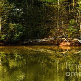 Thomas R Fletcher - Stonewall Jackson Lake