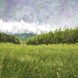 Stuck in the Field II - Jon Glaser
