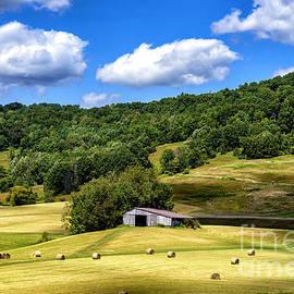 Thomas R Fletcher - Summer Morning Hay Field