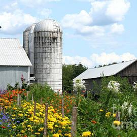 Linda  Jackson - Summer on the Farm