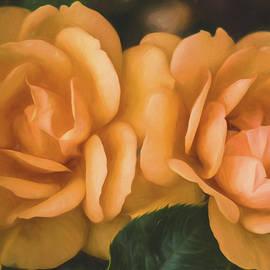 Teresa Wilson - Summer Roses