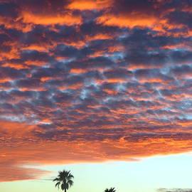 Selma Glunn - Sunset In Arizona