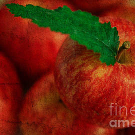 Tracy  Hall - Textured Apples