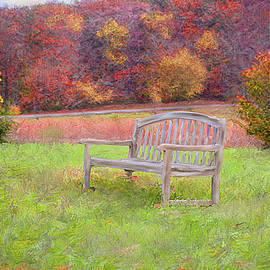 Mary Timman - The Bench