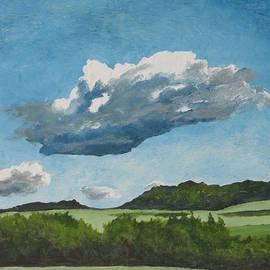 Francois Fournier - The Cumulus
