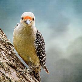 Cathy Kovarik - The Woodpecker