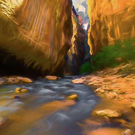 Michael Balen - Virgin River - Zion National Park