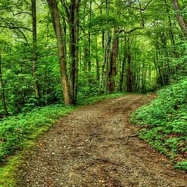 Darren Fisher - Virginia Back Roads