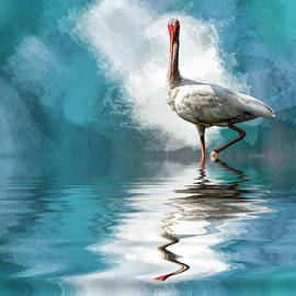 Cyndy Doty - Wading Ibis