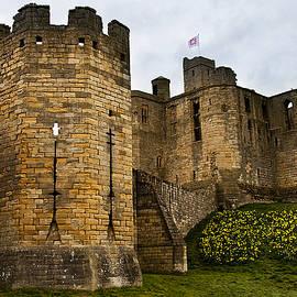 Jim Jones - Warkworth Castle in springtime