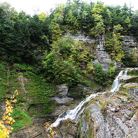 Trina  Ansel - Waterfall at Robert Treman State Park II