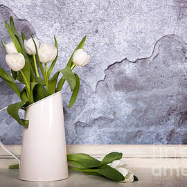 Jane Rix - White tulips