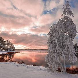 Alec Hickman - Winter sunrise