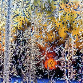 Viktor Birkus - Winter window frosting patterns