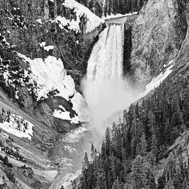Jamie Pham - Yellowstone Falls in Spring Time