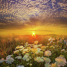 Your Whisper Tells A Secret - Phil Koch