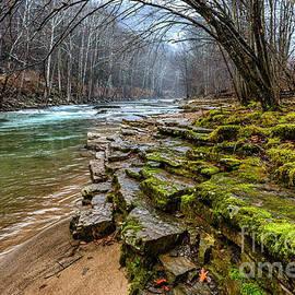 Thomas R Fletcher - Cherry Falls Elk River