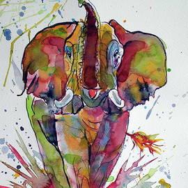 Colorful elephant - Kovacs Anna Brigitta